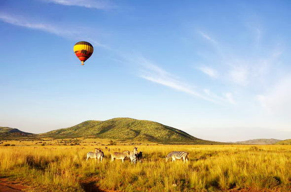 Hot air ballooning in the Pilansberg Game Reserve.