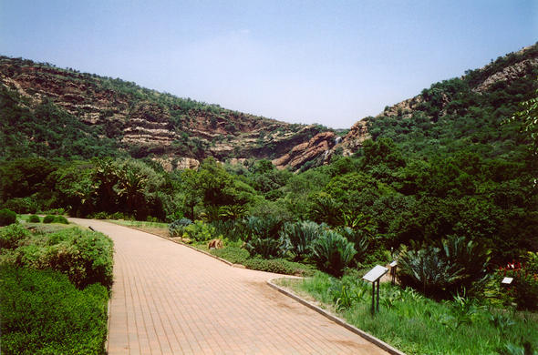 Stroll through the Walter Sisulu National Botanical Garden.